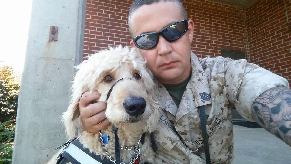 veteran with dog
