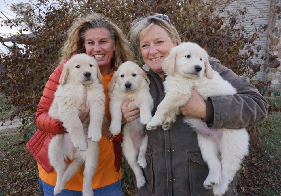 staff with pups